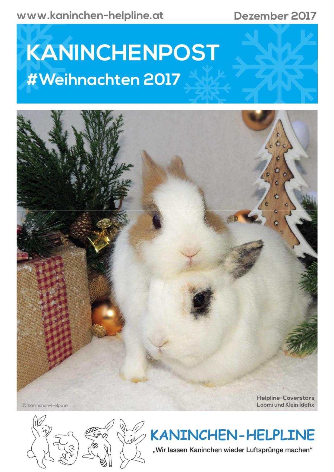 Cover Weihnachtspost 2017